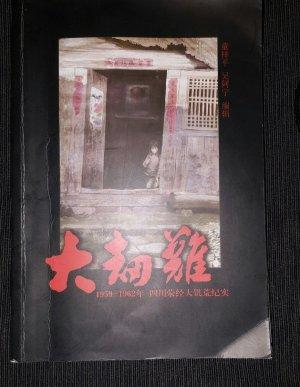 童梓平、吴阿宁简介《大劫难》