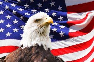 陶业:身份政治浅析-美国这是怎么了?(一)